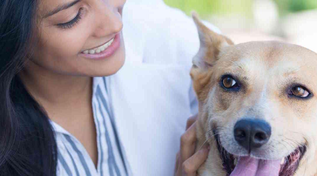 5 Consigli per mantenere sano il sistema fasciale del Tuo cane